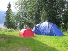 Jak wybrać dobry namiot