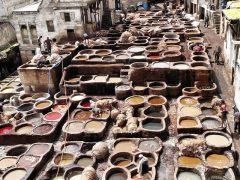 Kosmetyczny skarb z Maroka